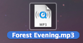 Converted MP3 file