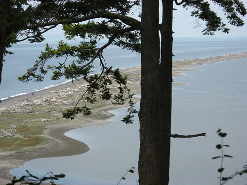 Dungeness Spit (1)