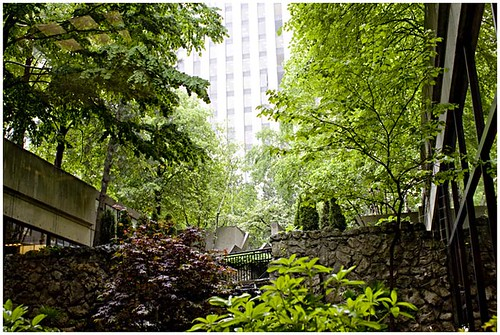 Green and the City:  Sheratons Waterfall Garden in Toronto