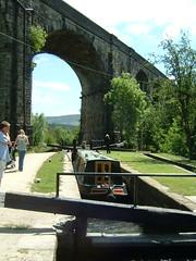 Canal 028 (Delpher) Tags: ducks saddleworth uppermill huddersfieldnarrowcanal