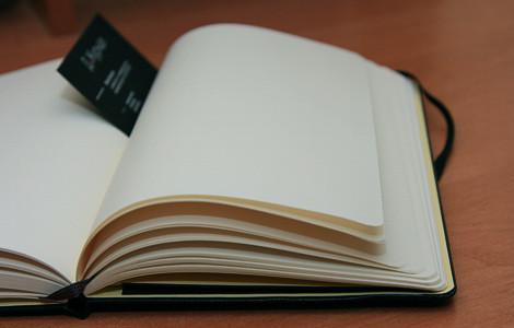 Moleskine. «Моя маленькая черная книжка»