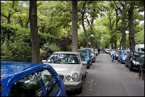cars and trees boulevard Edgar Quinet, Paris