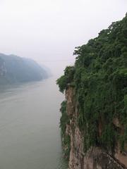 China-1005