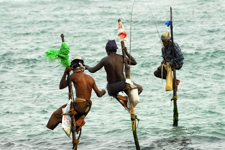 斯里蘭卡人文旅記