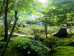 Garden - Ginkakuji