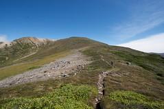安足間岳への道