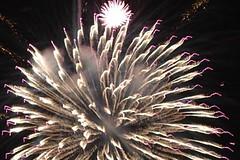 white chrysanthemum (EpicFireworks) Tags: cake fireworks pyro bang 13g loud pyrotechnics sib epicfireworks
