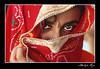 Throug the eyes of Ruby (Aditya Rao.) Tags: