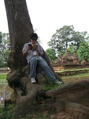 나무에 기대 읽기