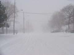 Winter madness, Toronto Canada (Yusuf Dahir's Somaliland Photos) Tags: torontocanada harshweather