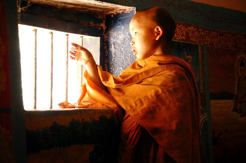Curius monk in training