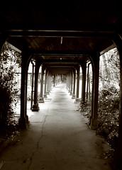 c o r r i d o r | o f | t h e | m i n d (Impossible Mossy) Tags: corridor canon350d pathway mentalhealth londonist gwl janemoss stlukeswoodsidehospital flickrunitedaward