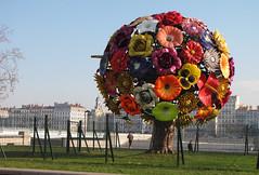 L'arbre à fleurs. Hinhin.