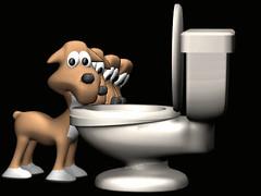 Dog Toilet.gif