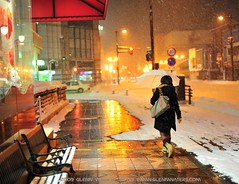 And it Snowed.(Hirosaki)   Glenn Waters  6,400 visits to this photo. Thank you. (Glenn Waters in Japan.) Tags: street snow girl japan night umbrella reflections 50mm lights nikon bokeh f14 14 sigma noflash aomori  hirosaki 90  japon      yokado   5photosaday  d700 colourartaward nikond700  glennwaters sigma50mmf14exdghsm superstarthebest 71march7th 69march25th