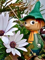 I SPOTTED SNUFFKIN OUT AND ABOUT TODAY (Toypincher) Tags: finland toy valley moomin moomins collectable snuffkin
