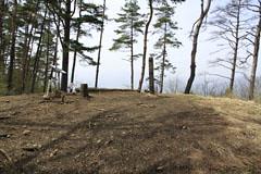 倉岳山の山頂