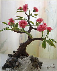 Bonsai Ros Cecile Brunner (RykhlinskaARTstudio) Tags: handmade decoration coldporcelain clayflowers lunaclay thaiclay