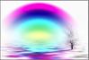 WHITE OUT rainbow flooded (jodi_tripp) Tags: white tree out rainbow digitalart single flooded joditripp challengeyouwinner wwwjoditrippcom photographybyjodtripp