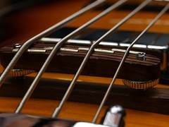 brownsville bass