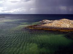 lichens (exoimperator) Tags: ocean ireland sea nature water tide deep lichen transparent storms depth