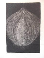 'Half a Red Onion' - mezzotint on Flickr