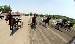 Harness Racing Remote.  July 3, 2008.