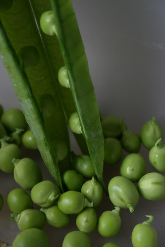 English pea pod and peas in a bowl.