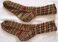 Manitoba Morning Socks