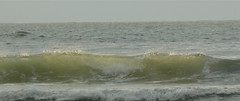 Waves on Indian Beach #5