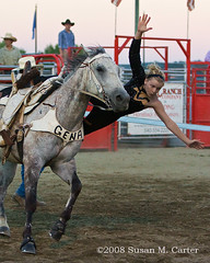 Trick Riding (smcarterphotos) Tags: horses horse woman cheval grey rider pferd equestrian equine