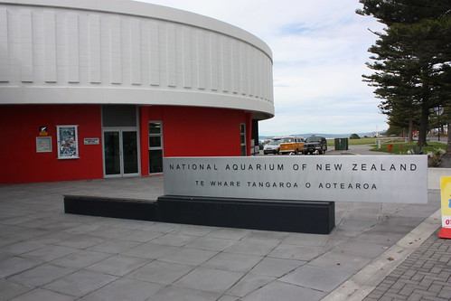National Aquarium Napier
