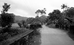IMG_6138 (CosmicDust) Tags: karnataka coorg madikeri civetcreek