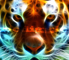 Fractal Tiger (ricdiggle) Tags: nikon tiger chinesenewyear plugin fractal frontpage d3 happynewyear hypno yearofthetiger redfield flickrexplore 100000views explored 200mmf2 160000views number1onexplore nikond3 fractalius yesimawareitisntafractal icantthankeveryoneenoughespeciallythosethatleftcomments 1000favorites