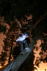 Bryan getting high....on the tree. (fank209) Tags: seattle snow tree night snowboarding lights riding bryan snowboard westseattle westy treeride ripka westseattlegolfcourse bryanripka ripker