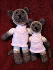Two Siamese kitties