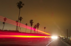 CRW_9518 (rtmabrit) Tags: california longexposure losangeles palmtree lightstreak dockweiler