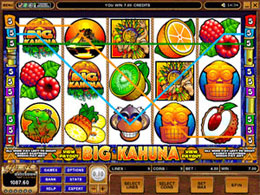 Big Kahuna Nodownload Video Slot