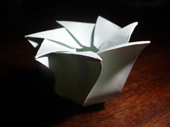 7-Sided Tato Box, Open Top, S-Curved Sides