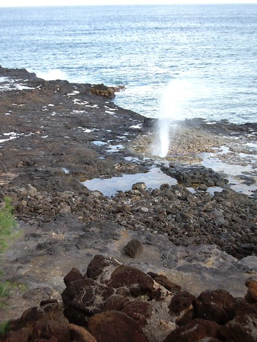 ACTIVE SPOUTING HORN
