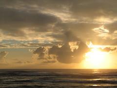 IMG_3056 (IanLudwig) Tags: old canon hawaii with taken powershot kauai hawaiian hawaiikai bigislandhawaii hawii hawaiibeach a620 hawaiicondo hawaiis kauaihawaii hawaiivolcano hawaiipictures konahawaii hawaiiisland travelhawaii kauaibeach alohahawaii my kauaiisland hawaiitour hawaiibeaches kauaivacation hawaiiactivities kauaitravel weddinghawaii hawaiiislands hawaiisurf hawaiihilo hawaiihotel kauaivacationrental vacationhawaii hawaiihotels northshorehawaii hawaiimap hawaiiluau kauaicondo hawaiiweather hawaiiweddings hawaiifishing hawaiiattractions hawaiivacationpackages hihawaii hawaiivacationrentals hawaiirentals kauairentals resorthawaii hawaiicondos kauaitours hikauai resortshawaii kauaihotel hawaiitours kauairental hawaiirental vacationshawaii traveltohawaii kauaihotels kauairesort vacationrentalskauai hawaiiinformation kauaiweather