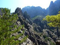 Trace cairnée de Tana di l'Orsu : Capu Tafonatu depuis le col 1150 m