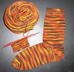 Artisan Acres Lambkin - Corn Maiden Sock 1