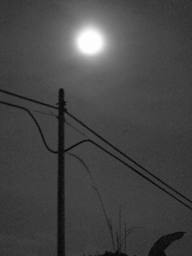 IMG_4366 The Moon,月亮