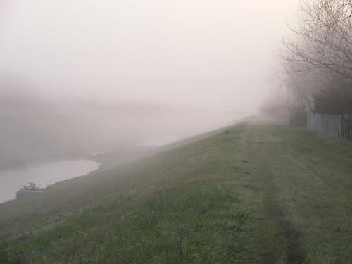 Fog_on_the_Bayou000.JPG