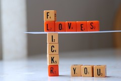 word games (kolix) Tags: orange game reflection love lines yellow word fun stand words site support flickr pieces play cross respect letters stack line scrabble points letter loves cubes piece placement score arrangement contribution criss intersect arrange compose