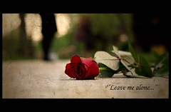 Leave me alone (Atilla1000) Tags: red love rose alone dof kisses explore frame gl cinematic ak atilla1000 kouyolu