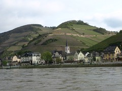 Rhine River Apr 08 011 (MurphMutt) Tags: castle germany rhineriver