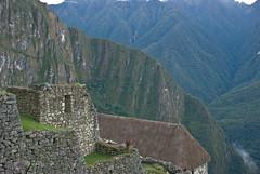 Machu Picchu. Ascending