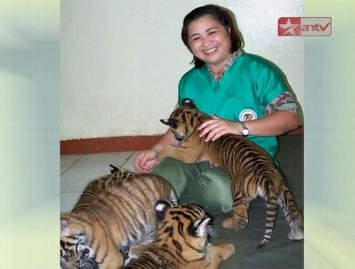 Binatang Langka Indonesia